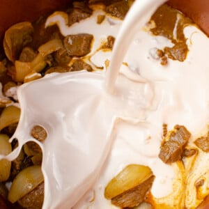 Coconut milk getting poured into the pressure cooker pot