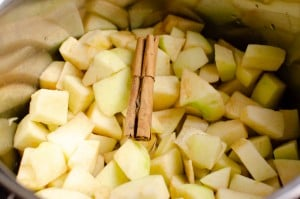 Cinnamon stick added to the Apple in a silver cooking pot