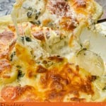 Parsnip and Sweet Potato Gratin image for pin